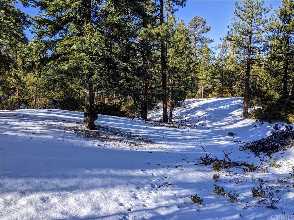Land for Sale at 32308 Rim of the World Lane Fawnskin, California 92333 United States